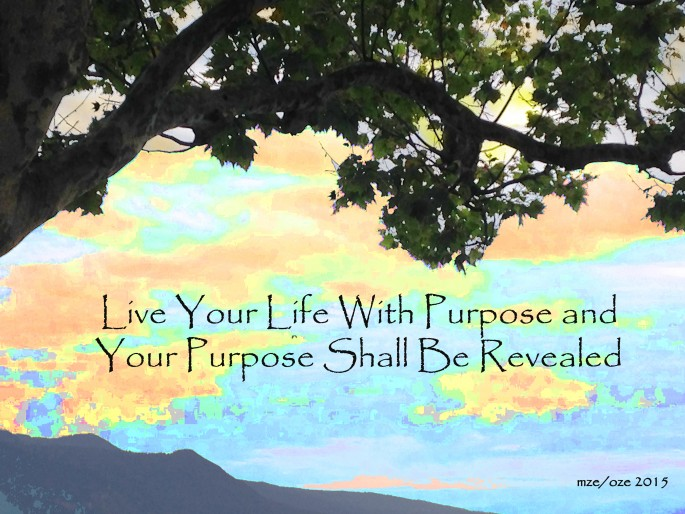 Live Your Life with Purpose