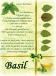 basil card ps file
