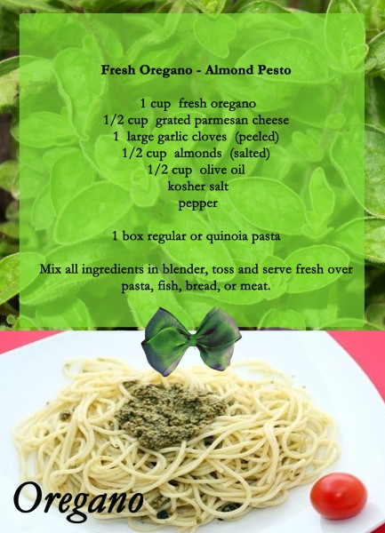 Oregano almond pesto